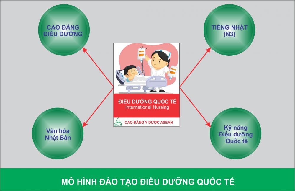 Giới thiệu về chương trình đào tạo ngành Điều dưỡng Quốc tế