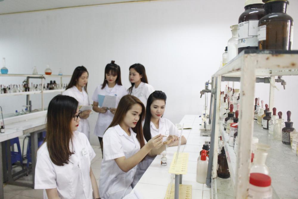 Ngành Dược - Nên học Cao đẳng Dược hay Đại học Dược?